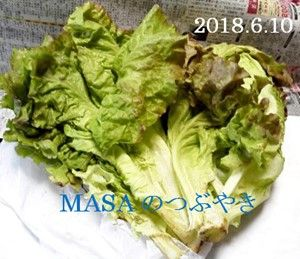 s-2018-06-11_170505