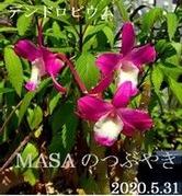 s-2020-05-31_080858A