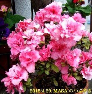 s-2015-04-29_170948