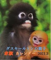 2021-03-15_093031