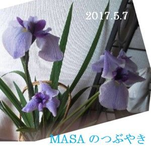 s-2017-05-08_114548