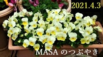 s-2021-04-03_113747