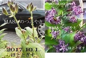 s-2018-05-29_200701