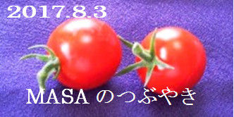 2017-08-04_145348