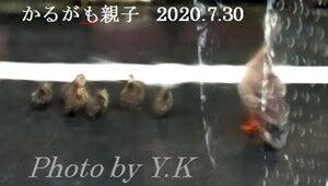 s-2020-07-30_134759