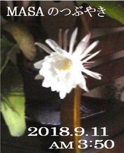 s-2018-09-12_155448