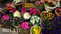 2021-03-17_165253