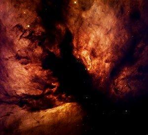 s-NGC2024-2