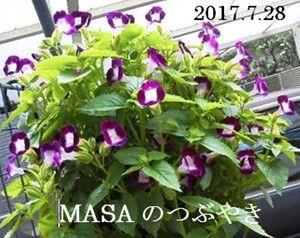 s-2017-07-30_120545