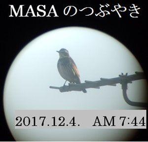 s-2017-12-07_123213