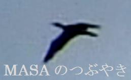 2016-03-26_102451