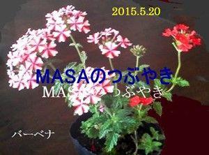 s-2017-05-20_203524