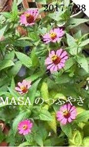 s-2017-07-30_120159