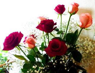 pict-バラ生花いろいろ-1