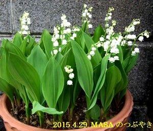 s-2015-04-29_165845