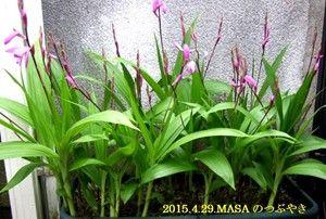 s-2015-04-29_163957
