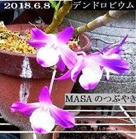 s-2018-06-08_145555