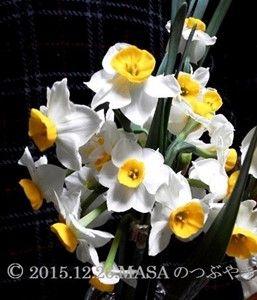 s-2015-12-27_065859