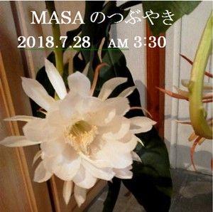 s-2018-07-28_110006