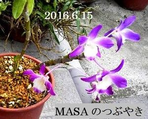 s-2018-06-20_072109