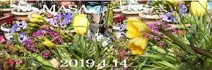 s-2019-04-13_170605