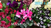 s-2021-04-03_113946