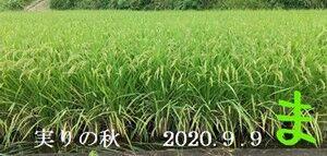 s-2020-09-27_174659