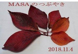 s-2018-11-13_095641