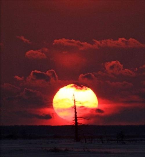 トドワラに沈む夕日s