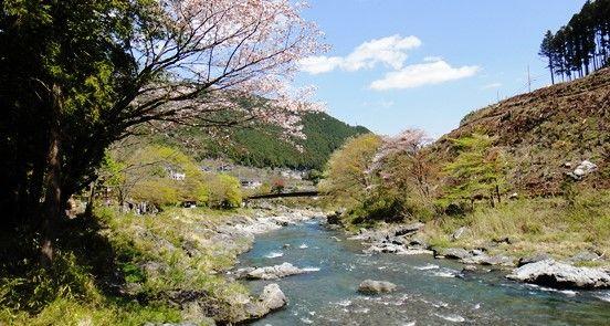 多摩川渓谷