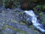 五段の滝の下流