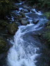 渓流の眺め1