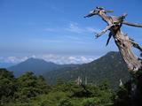 花山歩道からの景色