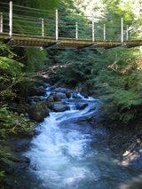 渓流の眺め3