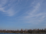 公園の景色1