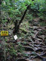 太忠岳への分岐