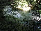 渓流沿いコースの眺め3
