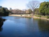 北の丸公園2