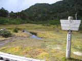 花之江河2