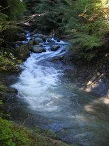 渓流の眺め2