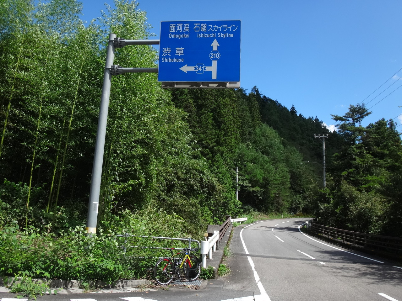cfd33101.jpg