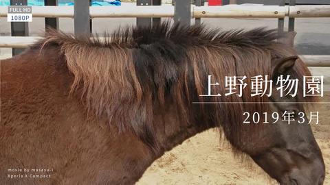 2019-03016 ueno