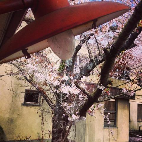 2014-04-04-13-15-20