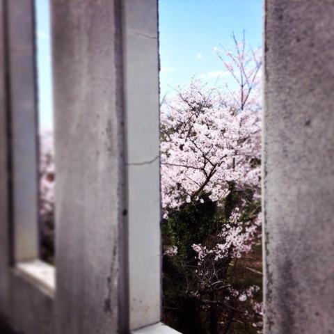 2014-04-04-13-11-45