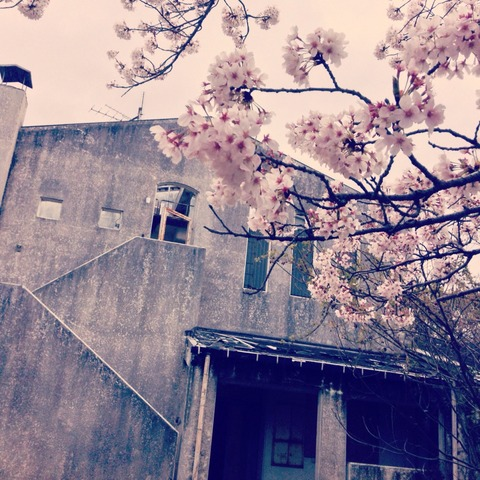 2014-04-04-12-20-45