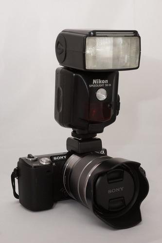 1200-DSC08817