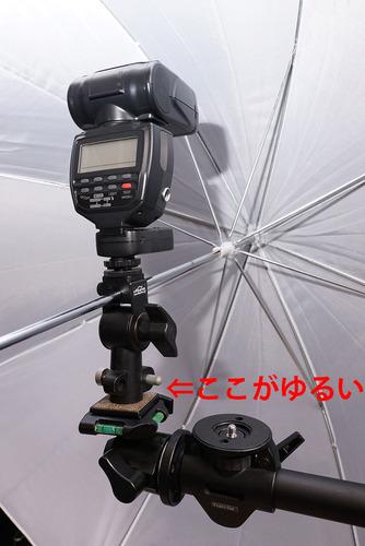 1200-DSC08923