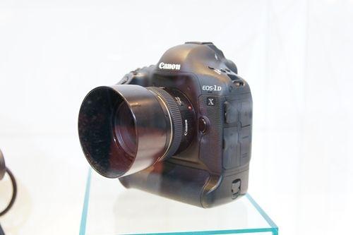 500-DSC02386