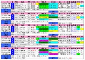 中山金杯(過去成績)2011