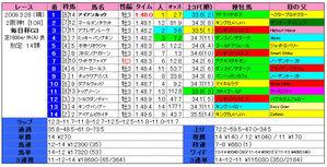 毎日杯(結果)2009